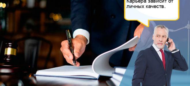 Какие есть профессии в юриспруденции?