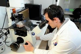 Что такое нанобиотехнологии: связанные с ними профессии